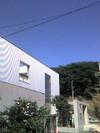 2008summer1
